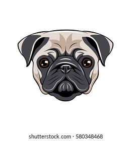 Pug dog face - vector illustration isolated on white background