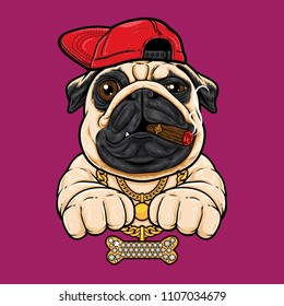 Pug dog with hiphop style