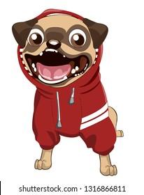 Pug Dog Hoodie and Jacket