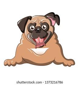 Pug dog icon. Cartoon of pug dog vector icon for web design isolated on white background