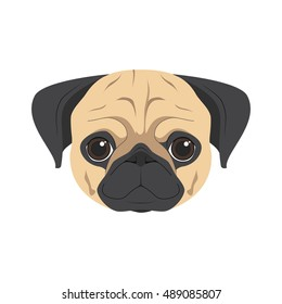 Pug dog isolated on white background vector illustration