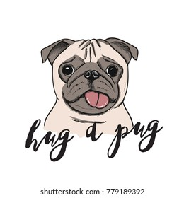 Pug dog portrait - vector illustration.