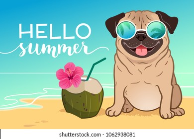 Pug dog wearing reflective sunglasses on a sandy beach, ocean in background, green coconut drink, Hello Summer text. Funny humorous lifestyle, tropical vacation, summer holidays, warm weather theme.