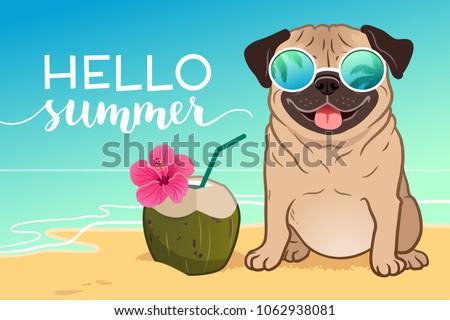 b9210ccac23 Pug Dog Wearing Reflective Sunglasses On Stock Vector (Royalty Free ...