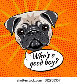 Pug dog. Who is a good boy. Vector illustration isolated on pop art background