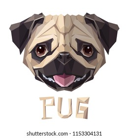 Pug funny Dog low poly design. Triangle vector illustration.