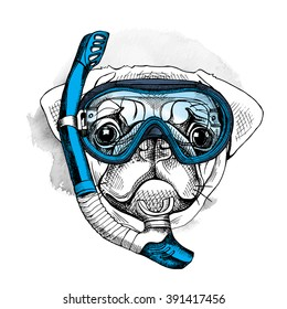 Pug portrait in a blue diving mask and with tube. Vector illustration.