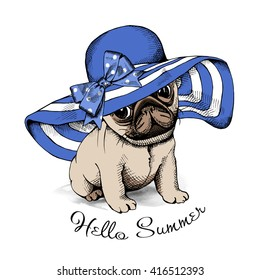 Pug Puppy in a blue summer sun hat with bow. Vector illustration.