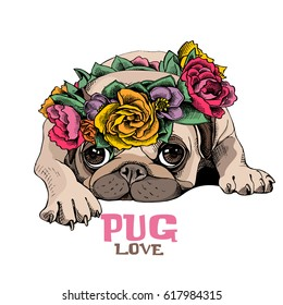 Pug Puppy in a bright floral  head wreath. Vector illustration.