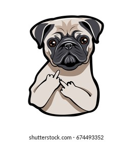 Pug Puppy Face. Dog Portait with middle finger up. Vector Illustration isolated on white background