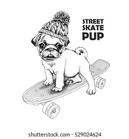 Pug puppy in a knitted hat with pom-pom on a skateboard. Vector black and white illustration.