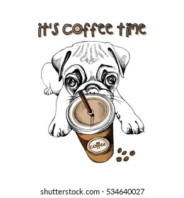 Pug puppy with a plastic cup of coffee. Vector illustration.