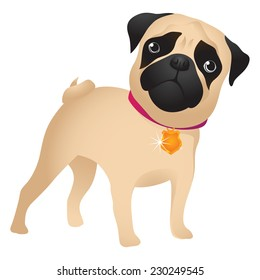 Pug puppy. Pug-dog on white background