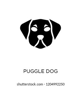 Puggle dog icon. Puggle dog symbol design from Dogs collection. Simple element vector illustration on white background.