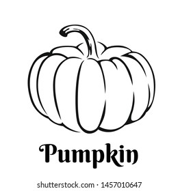 Pumpkin black and white icon. Vector illustration of vegetable outline. Simple monochrome image.
