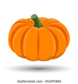 Pumpkin colorful icon