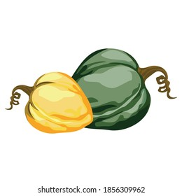 A pumpkin is a cultivar of winter squash that is round with smooth, slightly ribbed skin, and is most often deep yellow to orange in coloration.[1] The thick shell contains the seeds and pulp.