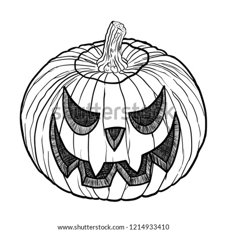 Pumpkin Design 1 Stem Design 1 Stock Vector Royalty Free