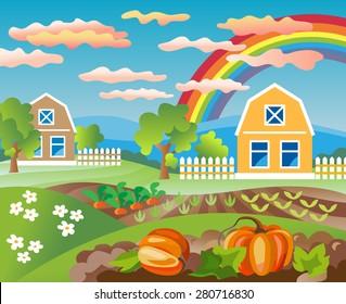 Pumpkin field. Rural landscape. Farmhouse and garden. Growing vegetables. Horticulture.