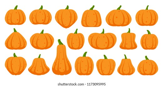 Pumkin Images Stock Photos Vectors Shutterstock Pumkin online english delivers these english language learning steps in an entertaining way, using cartoons, games, videos, songs and activities to make learning new english language fun for children. https www shutterstock com image vector pumpkin flat icons set sign kit 1173095995