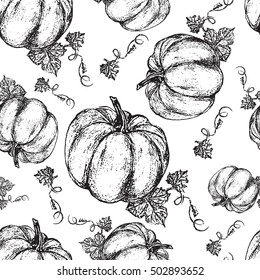 Pumpkin graphic ink vector illustration isolated on white backdrop, hand drawn engraved vintage sketch, seamless pattern for restaurant menu, symbol autumn holiday, wallpaper, textile, package design