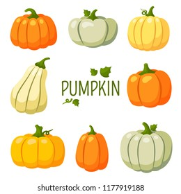 Pumpkin, Halloween, gourd, squash, harvest, colored, autumn, farm, set, items, crop, gather, garden stuff, vegetable, ripe, green stuff, fruitage, productivity of land, crop capacity, yield capacity,
