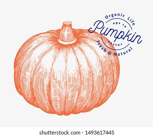 Pumpkin illustration. Hand drawn vector vegetable illustration. Engraved style Halloween or Thanksgiving Day symbol. Retro food illustration.