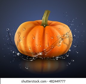 Pumpkin isolated on blue background with splashes of water. Realistic vector illustration.