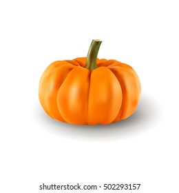 Pumpkin isolated on white background.
