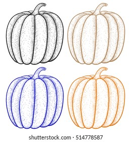 Pumpkin. Outline colored icon. Vector illustration isolated on white background