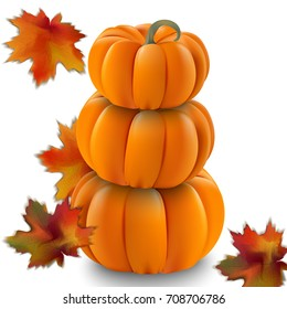 Pumpkin realistic Vector illustration on white background