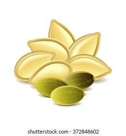 Pumpkin seeds isolated on white photo-realistic vector illustration