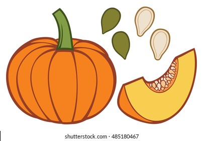 pumpkin with slice and seeds vector illustration