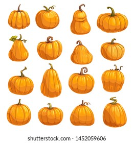 Pumpkin, squash and gourd vegetable cartoon icons. Orange and yellow autumn pumpkins with green leaf isolated vector symbols for agriculture harvest, Thanksgiving or Halloween holidays design