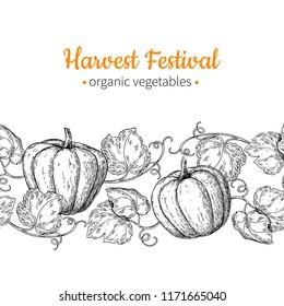 Pumpkin vector seamless pattern. Hand drawn vintage border. Harvest festival illustration. Farm Market sketch poster. Vegetable set of organic products. Detailed food drawing. Great for menu, banner,