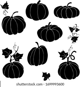 Pumpkin will help create a mood for the holiday of autumn. Vector hand draw  Illustration EPS10