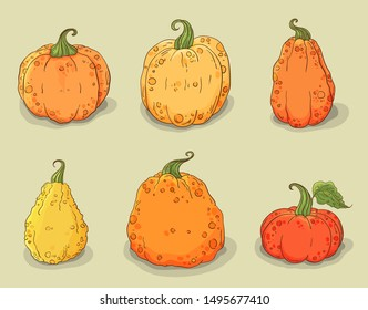 Pumpkins icons set. Isolated on light background. Halloween and Thanksgiving vegetables, closeup squash, gourd. Hand drawn orange and yellow autumn pumpkins with green leaf. Holiday decoration element