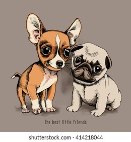 Puppies Chihuahua and Pug on beige background. Vector illustration.