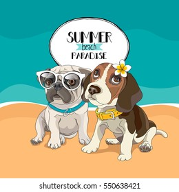 Puppies Pug and Beagle in a glasses and with a flower on a beach background. Vector illustration.