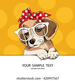 Puppy Beagle in a glasses and in a headband. Vector illustration.