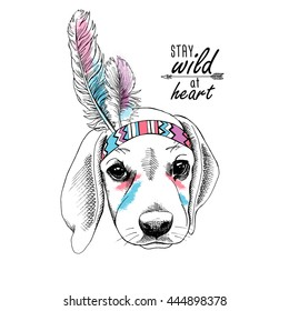 Puppy Beagle portrait in a Indian Feather Headdress. Vector illustration.