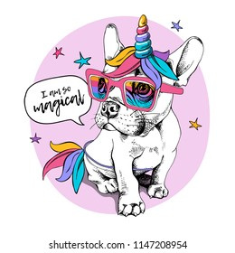 Puppy Bulldog in a bright colored costume of a unicorn: wig, horn and tail. Vector illustration. I am so magical - lettering quote. Humor poster, t-shirt composition, hand drawn style print.