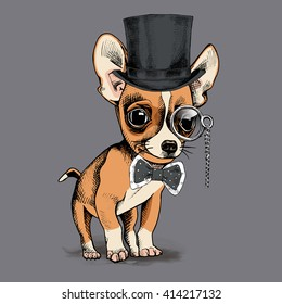 Puppy Chihuahua in a gentleman hat and with monocle. Vector illustration.