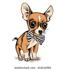 Puppy Chihuahua in a tie. Vector illustration.