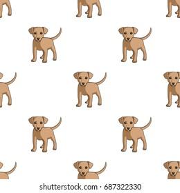 Animals single icon in cartoon style vector symbol stock illustration web. ed68da85a474
