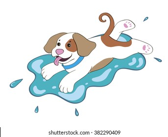 puppy in a puddle