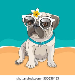 Puppy Pug in a glasses and with a flower on a beach background. Vector illustration.