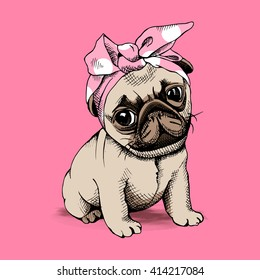 Puppy Pug in a Headband on pink background. Vector illustration.