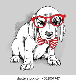 Puppy in a red glasses with tie on gray background. Vector illustration.