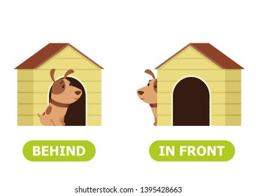 Puppy is standing in front of the box and behind the box. Illustration of opposites.  Card for teaching aid, for a foreign language learning. Vector illustration on white background.
